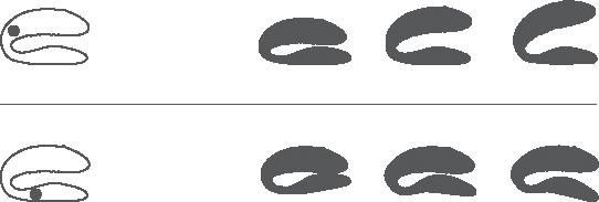 We Vibe Sync - имеет две точки фиксации угла наклона.